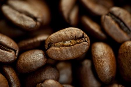 stimulant: Brown Coffee Beans