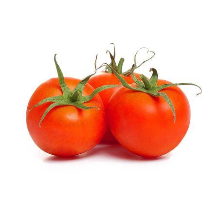 Tomatos on white background