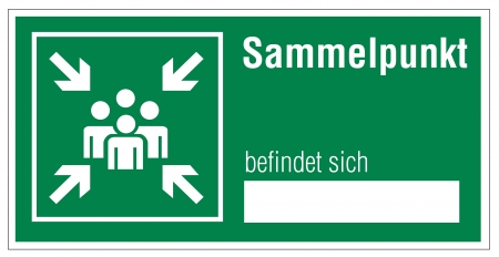 respectfully: Rescue sign icon exit emergency collecting point arrow