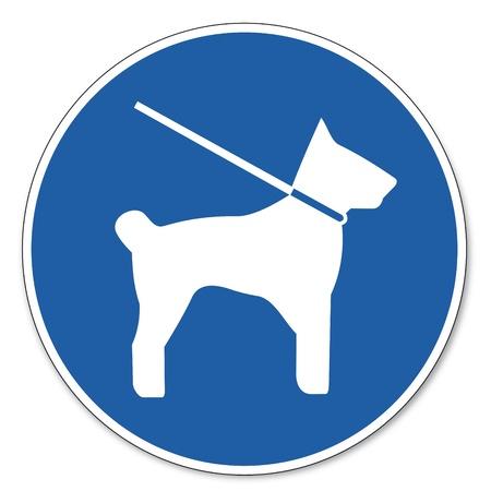 dog on leash: Mandado se�ales de seguridad de las l�neas de trabajo pictograma signo se�ales de seguridad de obligado perro