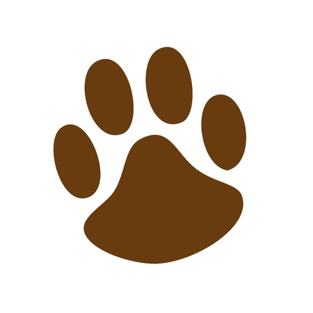 Animal Paw pet wolf paw paw vector bear footprint animal paw cat paw fingerprint impression Vector
