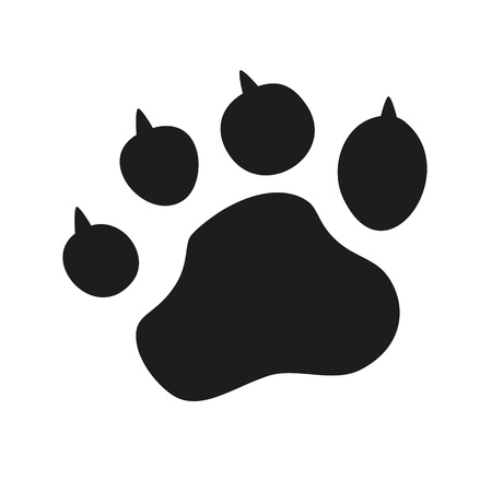 animal tracks: Animal Paw pet wolf paw paw bear footprint claws paw cat paw fingerprint impression