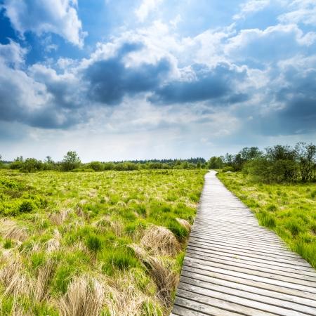venn: high venn boardwalk trail Belgium Eifel nature park moorland clouds tourism