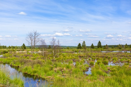 far sighted: venn high moorland lake water belgium Eifel nature park moorland clouds tourism