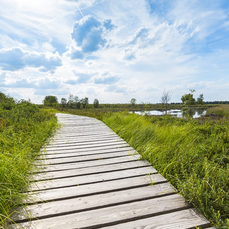 far sighted: high venn boardwalk trail Belgium Eifel nature park moorland clouds tourism