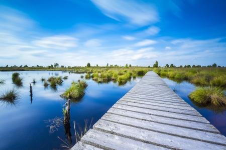 Hohes Venn Promenade Spur Wasser See Belgien Eifel Naturpark Moor Wolken Tourismus Lizenzfreie Bilder