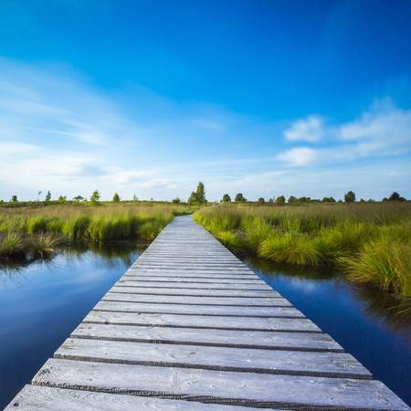 far sighted: high venn boardwalk trail water lake Belgium Eifel nature park moorland clouds tourism