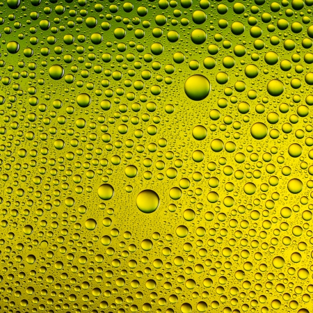 hydrophobic: Water drops spectral gradient yellow green nature colors rainbow colorful beading lotuseffekt dew sealing Stock Photo