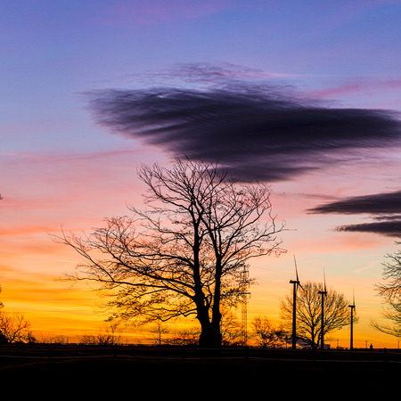 Sunrise electricity pylon pinwheel winter tree nature silhouette old blue hour hot sunlight photo