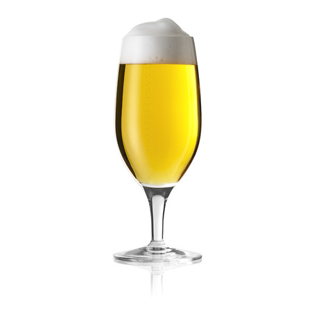 beer tulip: pils beer glass mushroom dew drop beer froth foam crown gold alcohol brewery Gastro isolated