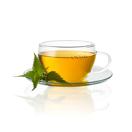 nettle: tea glass cup drink nettle medicinal plant isolated hot drink cold-hot free agency Stock Photo