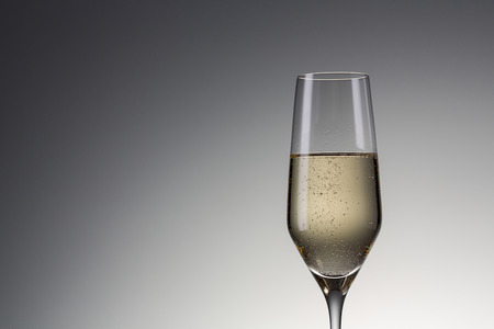 christmas profits: Single champagne glass on gradient background.