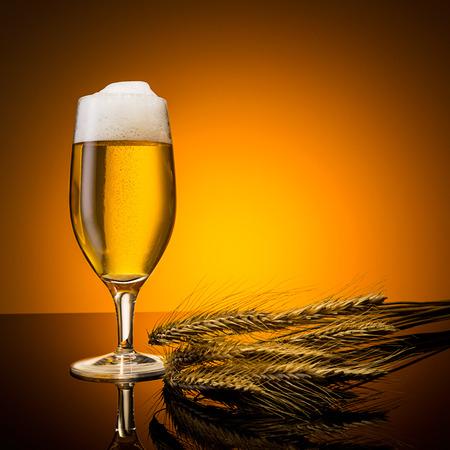 beer tulip: golden beer glass with corn ears on orange background Stock Photo