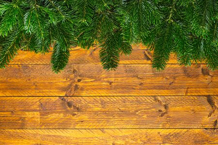 cocaine: ine of fir branches on wooden background