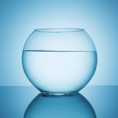 fishbowl: fishbowl with water on blue background