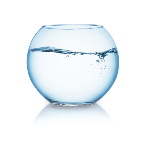 pez dorado: pecera con olas de agua aislados en blanco