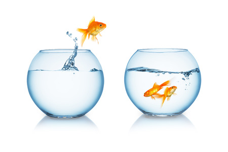 fishbowl with a jumping goldfish isolated on white Standard-Bild