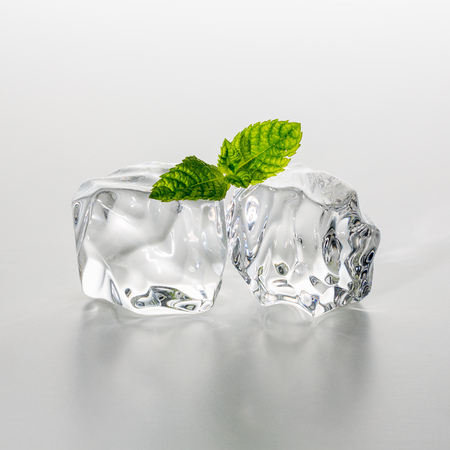 icecubes: Two ice cubes with a mint leaf