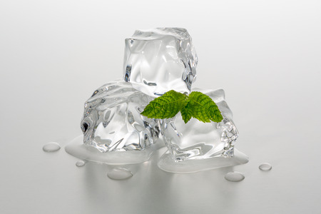 group of three melting ice cubes with mint