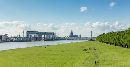 bollards: city of Cologne at the Rhine shore bollards with meadow at spring