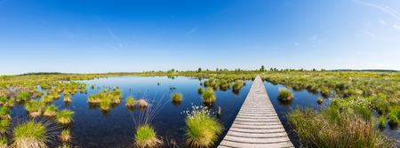 turba: Vista panorámica de un lago en el pantano Altos Fagnes en primavera en Alemania Foto de archivo