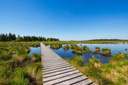 turba: Lake Hautes Fagnes en la ciénaga Alto Fens en Bélgica