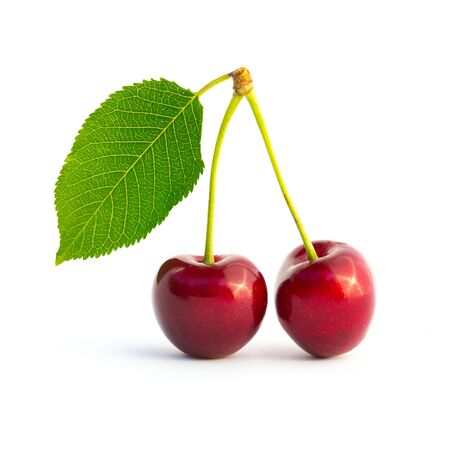 cereza: Dos cerezas aisladas sobre fondo blanco