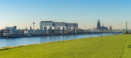 city view: Panoramic view of cologne city at summer with crane houses and Cathedral