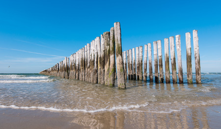 breakwaters: old wooden breakwaters on the beach at summer Netherlands Stock Photo