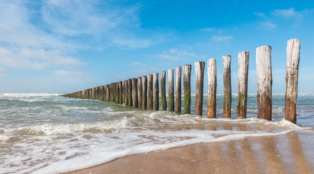 beach landscape in the Netherlands