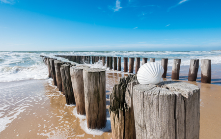Beach holidays at the sea