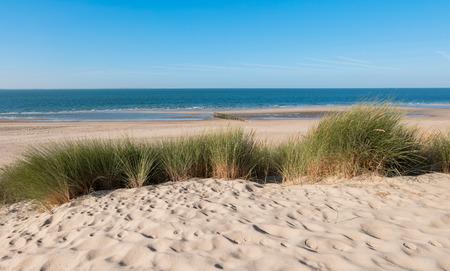 Kustlijn met dijk, zand en gras in Zeeland, Holland Stockfoto - 74069439