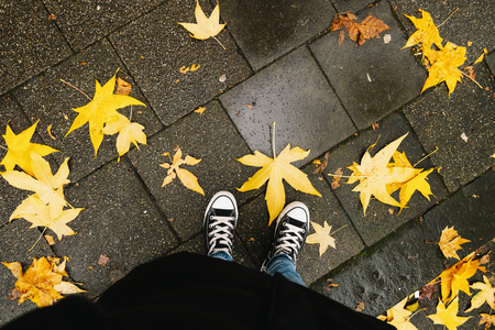 Young woman standing in autumn leaves on the sidewalk, personal pespective from above. Imagens - 116861712