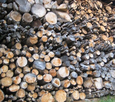 Firewood 版權商用圖片
