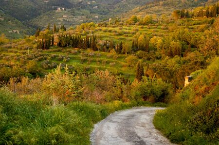curving: Curving country road in Tuscany region of Italy.