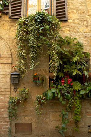 Walls and flowers in villages in Tuscany region of Italy. Banco de Imagens - 1157391