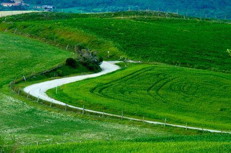Winding gravel road in Tuscany region of Italy. photo