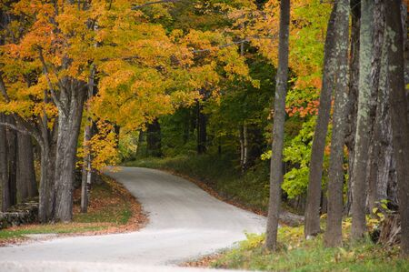 dirt road: Gravel road beneath colorful autumnal trees Stock Photo