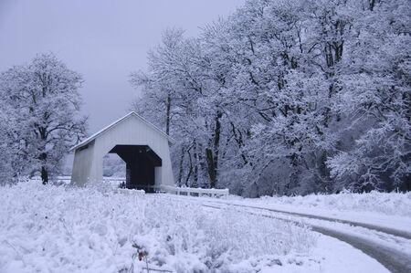 covered bridge': Covered bridge covered in snow, Corvallis, OR.