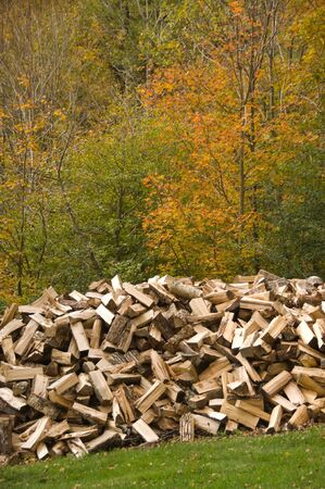 energy work: Pile of wood chopped and ready for the fireplace