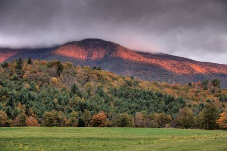 cropland: Tree covered hills in autumn, a New England scene