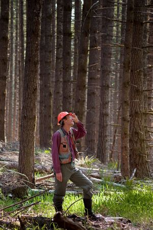 Forester standing among Douglas fir trees in the Pacific Northwest