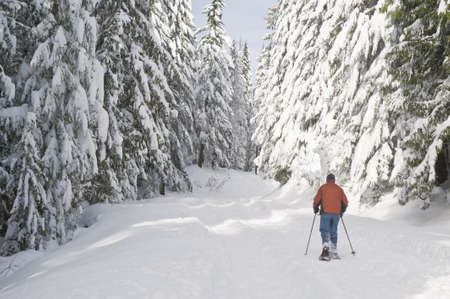 snowshoeing: Man snowshoeing in a snowy landscape Stock Photo