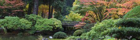 Autumn in the Japanese Garden, Portland, Oregon
