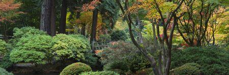 Herfst in de Japanse tuin, Portland (Oregon)