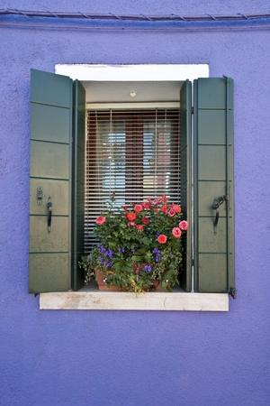 Colorful windows and flowerpots in Burano Italy
