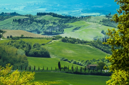 hilly: Rural countryside landscape in Tuscany region of Italy.