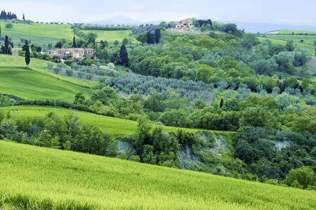 Landelijk platteland landschap in Toscane regio van Italië.