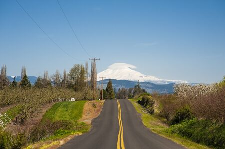 Rural road through Hood River Valley, Mt  Adams in background photo