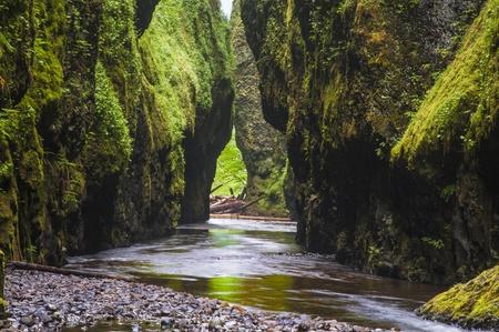 Oneonta Gorge, river canyon in Columbia Gorge, Oregon